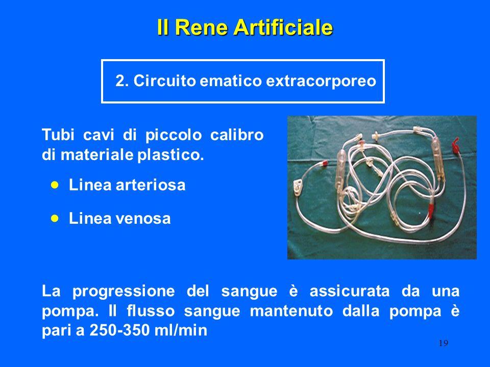 19 Il Rene Artificiale 2. Circuito ematico extracorporeo Tubi cavi di piccolo calibro di materiale plastico. Linea arteriosa Linea venosa La progressi