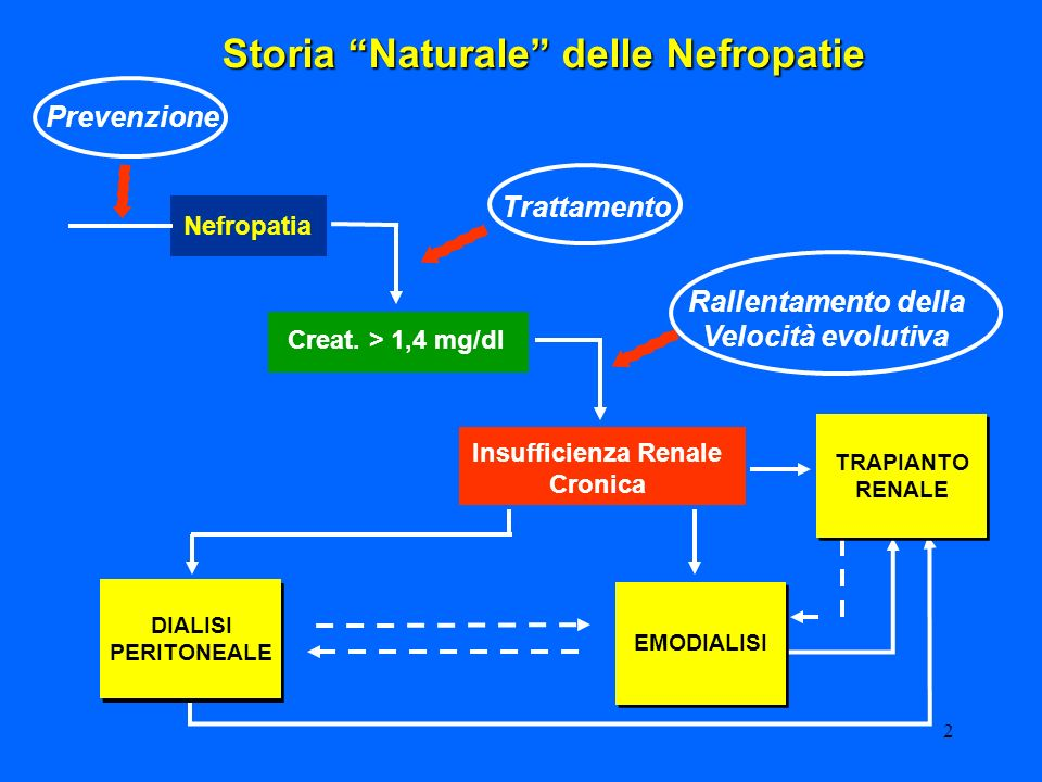 3 Dialisi La dialisi è una metodica di depurazione dellorganismo realizzata mediante lutilizzo di membrane semipermeabili e di apposite soluzioni (liquido dializzante) A.