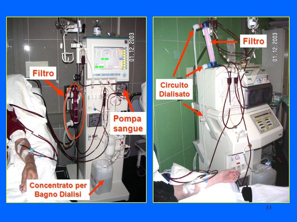 33 Filtro Filtro Pompasangue CircuitoDialisato Concentrato per Bagno Dialisi