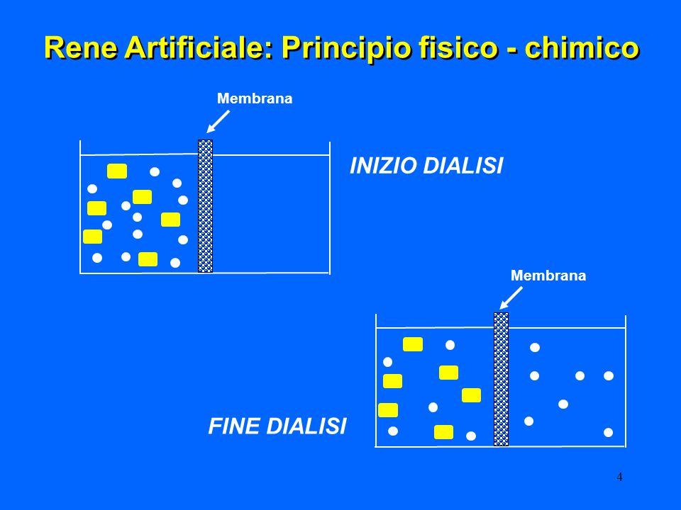 4 FINE DIALISI INIZIO DIALISI Rene Artificiale: Principio fisico - chimico Membrana