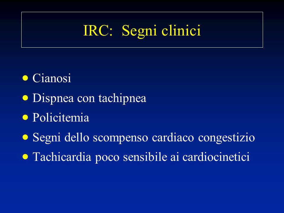 IRC: Segni clinici Cianosi Dispnea con tachipnea Policitemia Segni dello scompenso cardiaco congestizio Tachicardia poco sensibile ai cardiocinetici