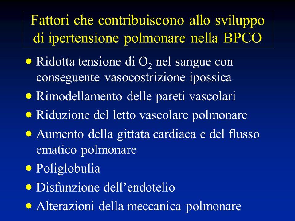 Fattori che contribuiscono allo sviluppo di ipertensione polmonare nella BPCO Ridotta tensione di O 2 nel sangue con conseguente vasocostrizione iposs