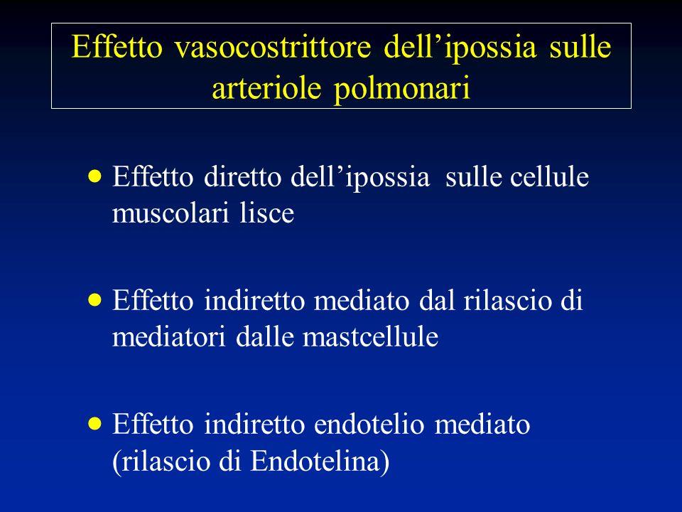Effetto vasocostrittore dellipossia sulle arteriole polmonari Effetto diretto dellipossia sulle cellule muscolari lisce Effetto indiretto mediato dal