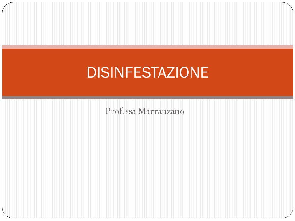 Prof.ssa Marranzano DISINFESTAZIONE