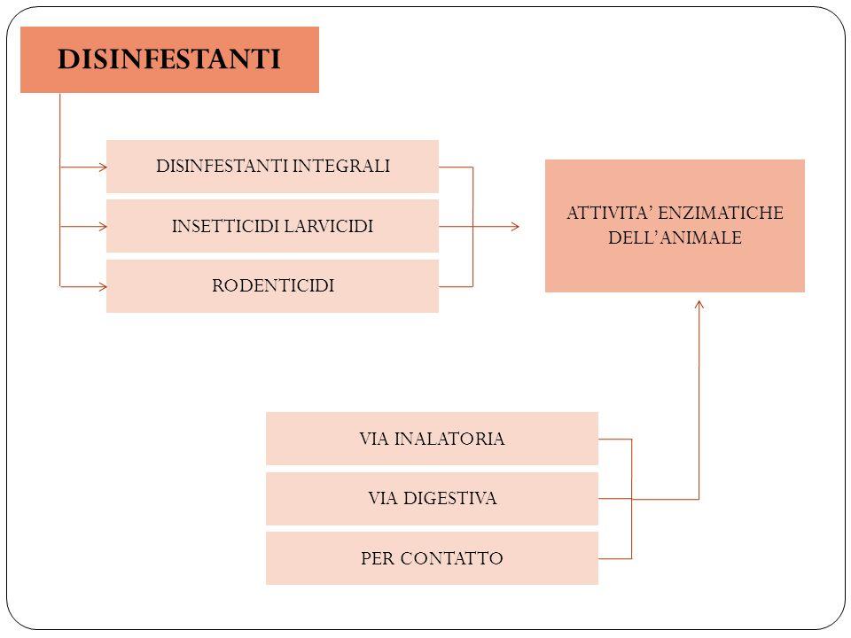 TRATTAMENTO CONOSCENZE EFFICACE : EFFICIENTE: ELIMINARE IL RISCHIO DI INFEZIONE INDIRETTO ELIMINAZIONE DEL RISCHIO:RAPIDA, POCO ONEROSA, SENZA DANNI ALLUOMO E ALLAMBIENTE - PARASSITA (CICLO BIOLOGICO) - AMBIENTE D USO (ESTERNO O CONFINATO) - PERIODICITA D IMPIEGO - TOSSICITA – AZIONE RESIDUA - COSTO - DISPONIBILITA DI PERSONALE SPECIALIZZATO