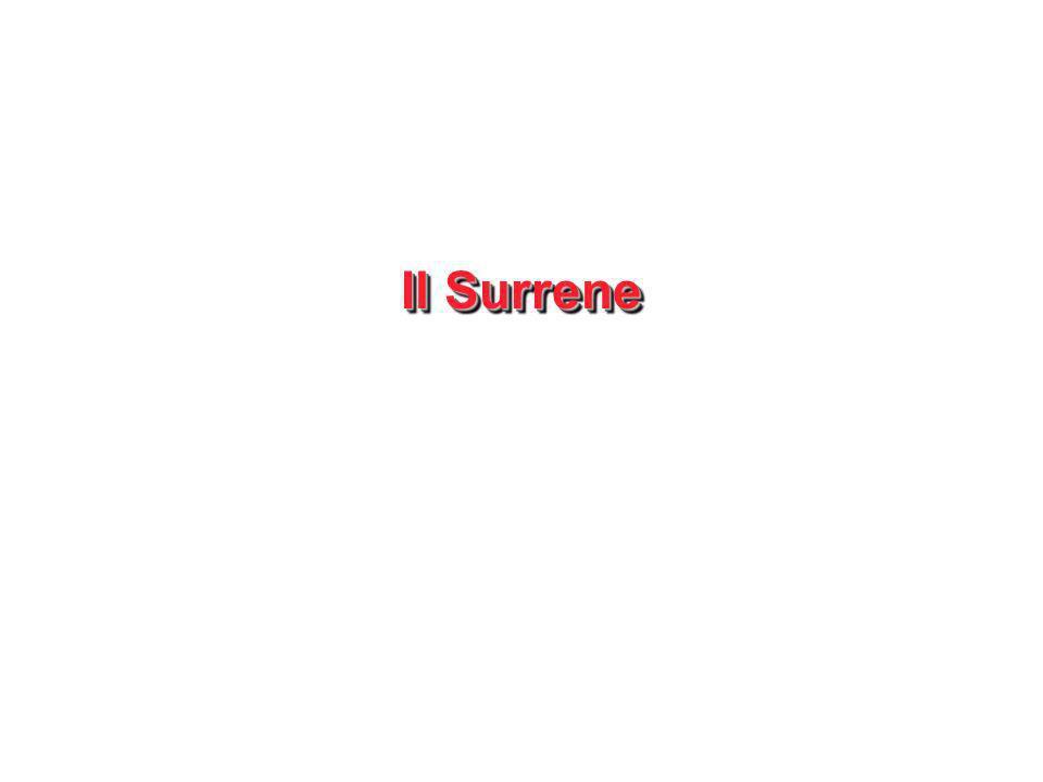 Il Surrene