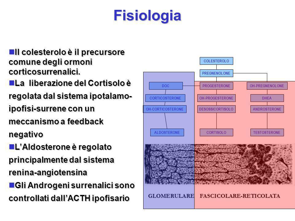 Fisiologia. COLESTEROLO PREGNENOLONE PROGESTERONE OH-PROGESTERONE DESOSSICORTISOLO CORTISOLO DOC CORTICOSTERONE OH-CORTICOSTERONE ALDOSTERONE OH-PREGN