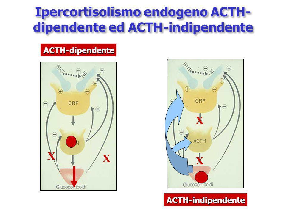 Ipercortisolismo endogeno ACTH- dipendente ed ACTH-indipendente X X X X ACTH-dipendente ACTH-indipendente