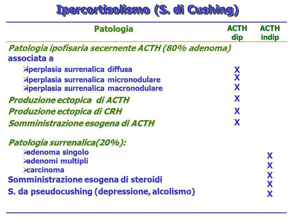 XXXXXXXXXX XXXXXXXXXXXXX Patologia ipofisaria secernente ACTH (80% adenoma) associata a iperplasia surrenalica diffusa iperplasia surrenalica diffusa