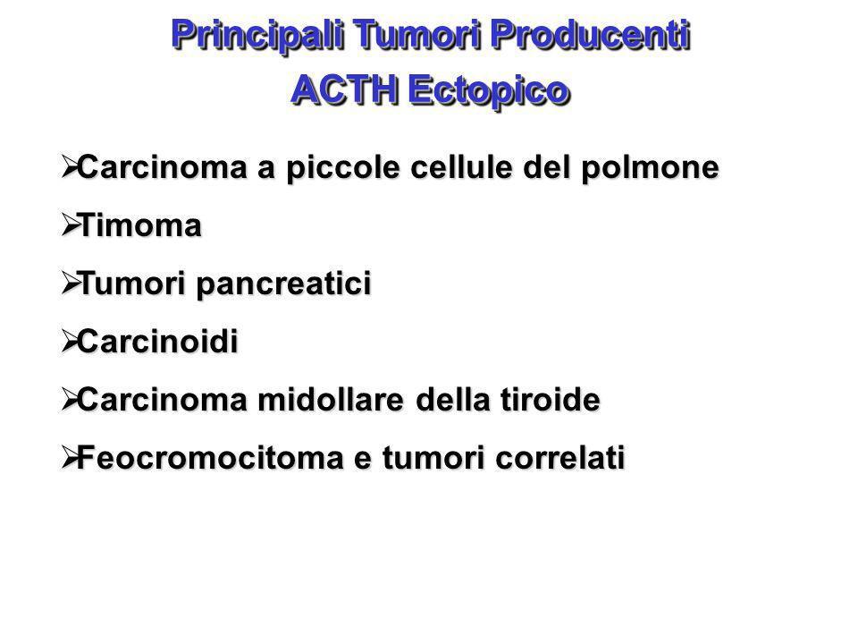 Principali Tumori Producenti ACTH Ectopico Principali Tumori Producenti ACTH Ectopico Carcinoma a piccole cellule del polmone Carcinoma a piccole cell