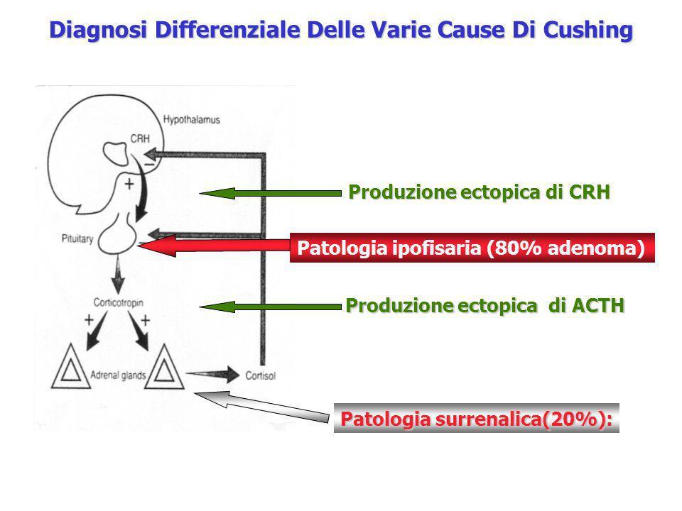 Diagnosi Differenziale Delle Varie Cause Di Cushing Patologia ipofisaria (80% adenoma) Patologia surrenalica(20%): Produzione ectopica di ACTH Produzi
