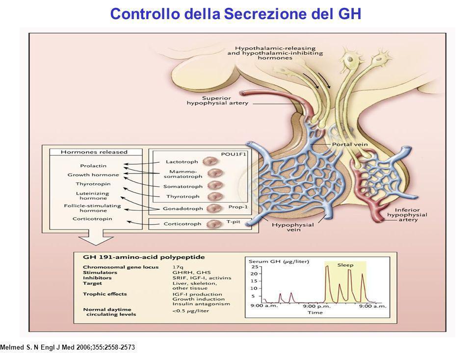Melmed S. N Engl J Med 2006;355:2558-2573 Controllo della Secrezione del GH
