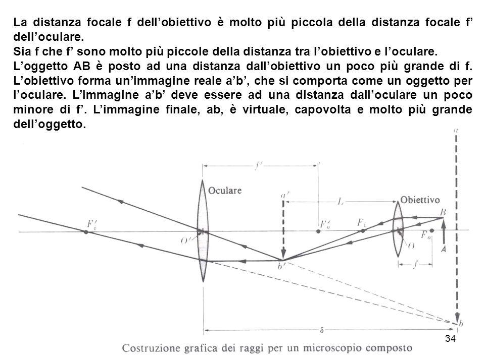 La distanza focale f dellobiettivo è molto più piccola della distanza focale f delloculare. Sia f che f sono molto più piccole della distanza tra lobi