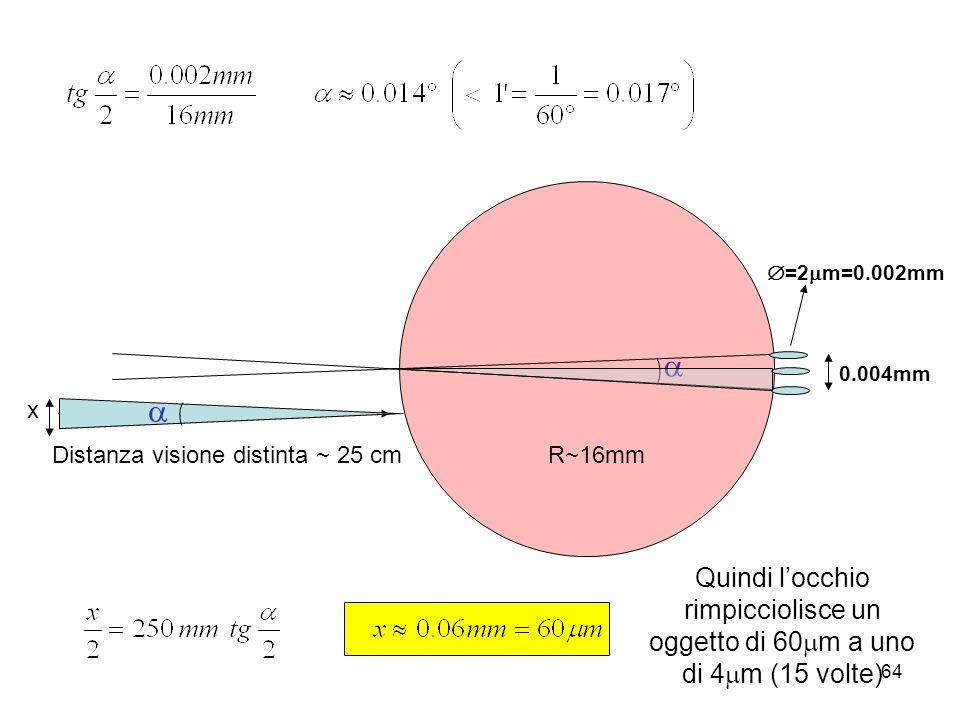0.004mm =2 m=0.002mm R~16mmDistanza visione distinta ~ 25 cm x Quindi locchio rimpicciolisce un oggetto di 60 m a uno di 4 m (15 volte) 64