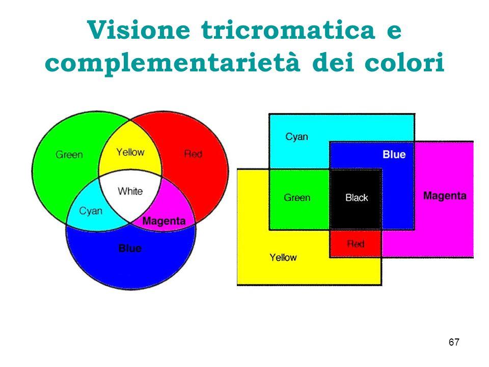Visione tricromatica e complementarietà dei colori 67