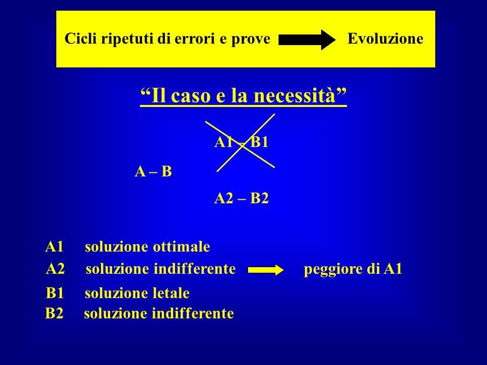 A – B A1 – B1 A2 – B2 A1 soluzione ottimale A2 soluzione indifferente peggiore di A1 B1 soluzione letale B2 soluzione indifferente Il caso e la necess