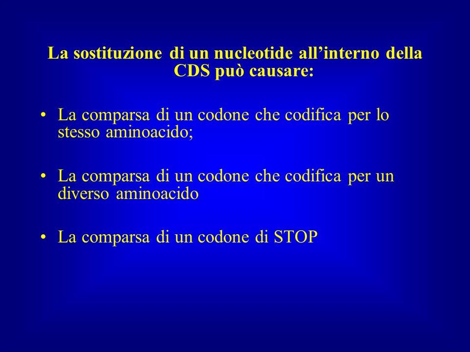 La sostituzione di un nucleotide allinterno della CDS può causare: La comparsa di un codone che codifica per lo stesso aminoacido; La comparsa di un c