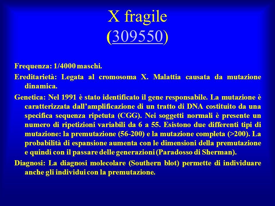 X fragile (309550)309550 Frequenza: 1/4000 maschi. Ereditarietà: Legata al cromosoma X. Malattia causata da mutazione dinamica. Genetica: Nel 1991 è s