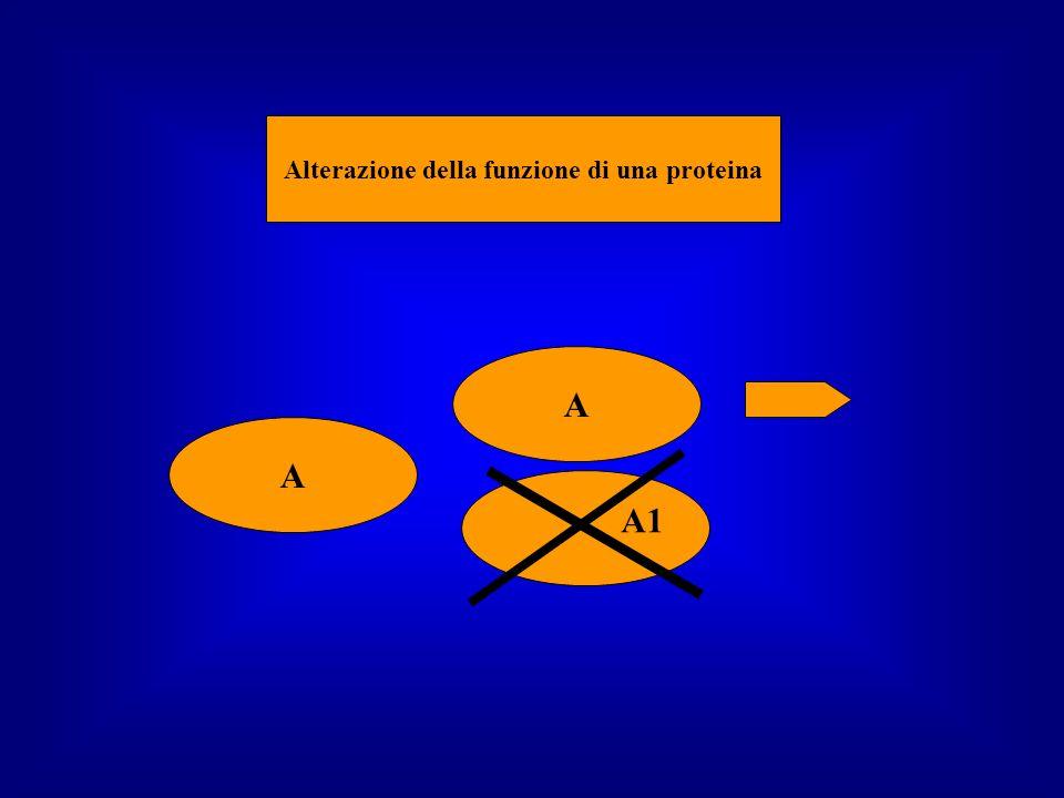 A1 A A Alterazione della funzione di una proteina A1