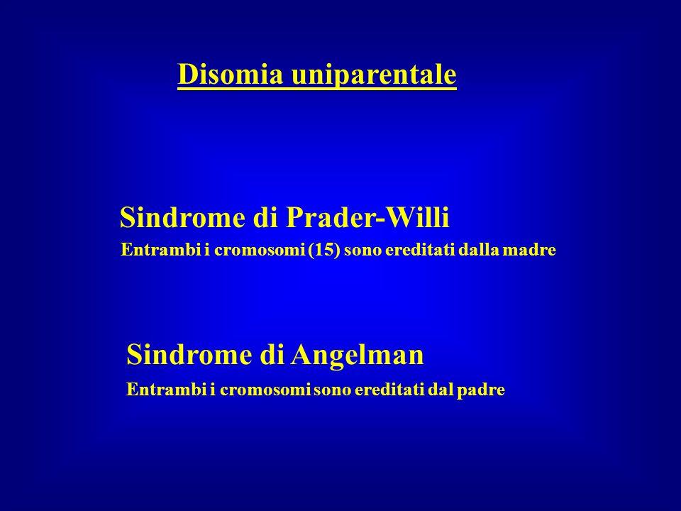Disomia uniparentale Sindrome di Prader-Willi Sindrome di Angelman Entrambi i cromosomi (15) sono ereditati dalla madre Entrambi i cromosomi sono ered