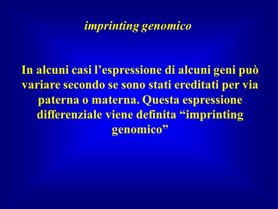 imprinting genomico In alcuni casi lespressione di alcuni geni può variare secondo se sono stati ereditati per via paterna o materna. Questa espressio