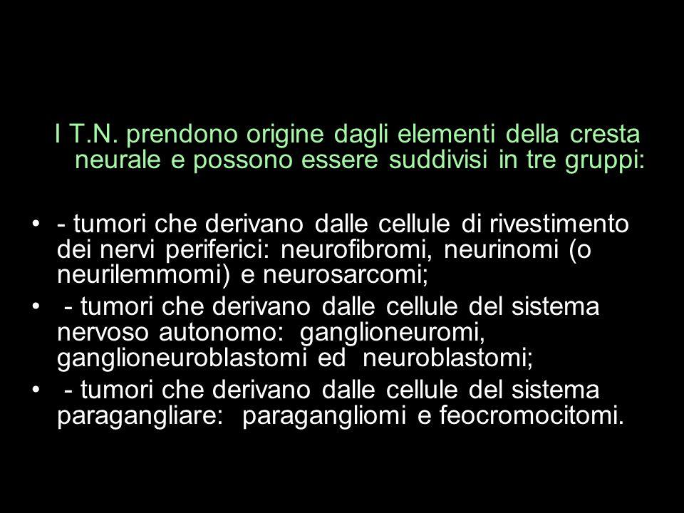 I T.N. prendono origine dagli elementi della cresta neurale e possono essere suddivisi in tre gruppi: - tumori che derivano dalle cellule di rivestime