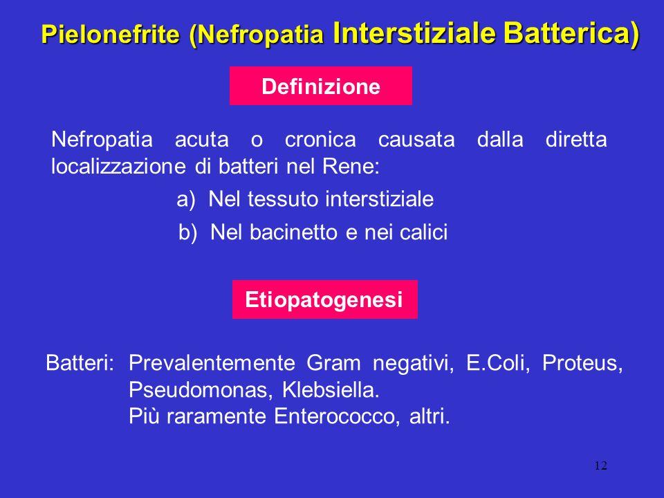 12 Definizione Pielonefrite (Nefropatia Interstiziale Batterica) Nefropatia acuta o cronica causata dalla diretta localizzazione di batteri nel Rene:
