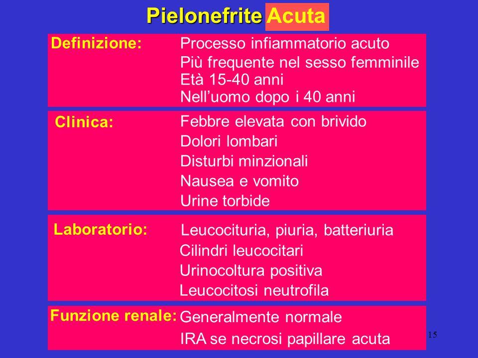 15 Pielonefrite Pielonefrite Acuta Processo infiammatorio acuto Più frequente nel sesso femminile Età 15-40 anni Nelluomo dopo i 40 anni Definizione: