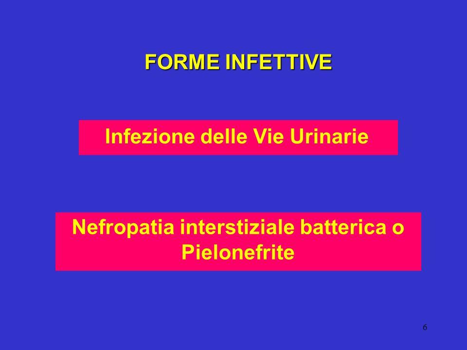 6 Nefropatia interstiziale batterica o Pielonefrite FORME INFETTIVE Infezione delle Vie Urinarie