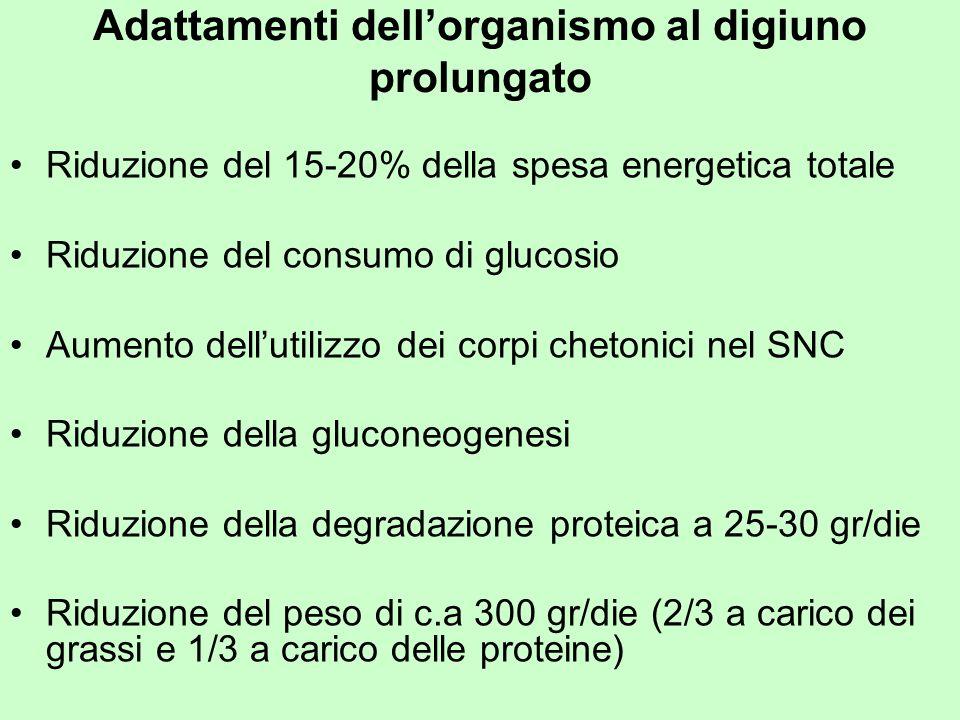 Adattamenti dellorganismo al digiuno prolungato Riduzione del 15-20% della spesa energetica totale Riduzione del consumo di glucosio Aumento dellutili