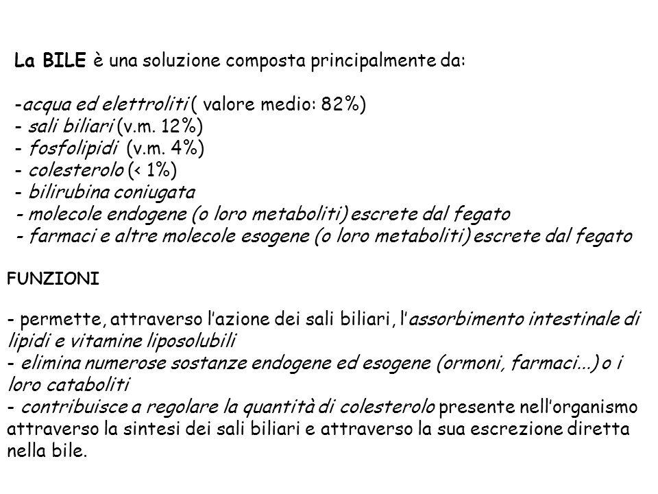 La BILE è una soluzione composta principalmente da: -acqua ed elettroliti ( valore medio: 82%) - sali biliari (v.m. 12%) - fosfolipidi (v.m. 4%) - col