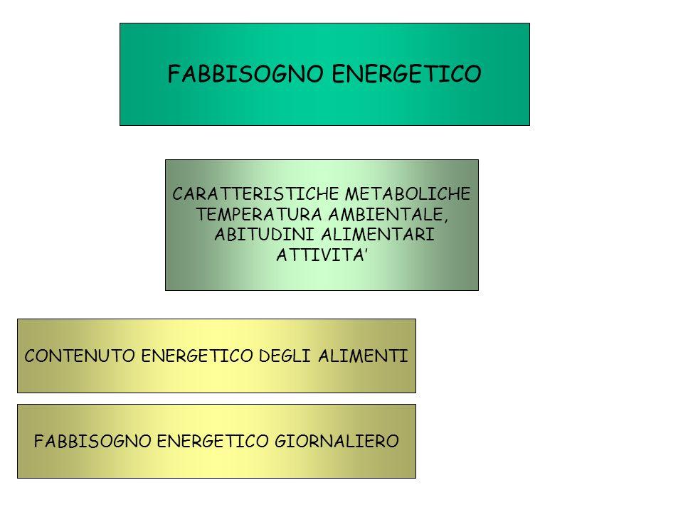 FABBISOGNO ENERGETICO CARATTERISTICHE METABOLICHE TEMPERATURA AMBIENTALE, ABITUDINI ALIMENTARI ATTIVITA CONTENUTO ENERGETICO DEGLI ALIMENTI FABBISOGNO