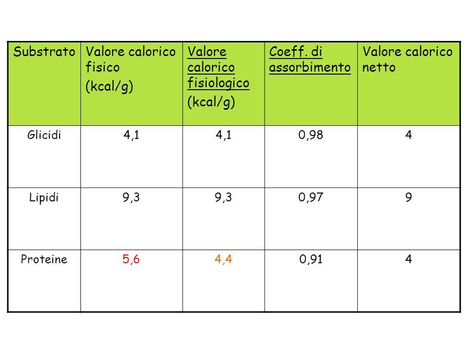 SubstratoValore calorico fisico (kcal/g) Valore calorico fisiologico (kcal/g) Coeff. di assorbimento Valore calorico netto Glicidi4,1 0,984 Lipidi9,3