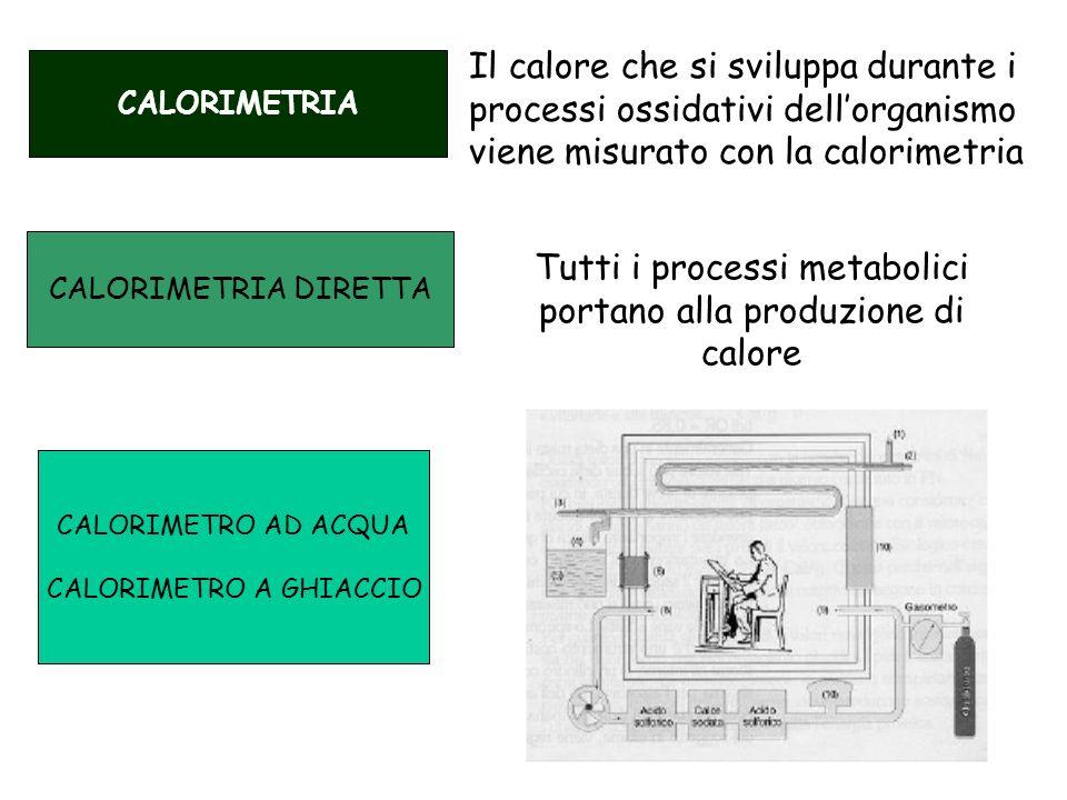 CALORIMETRIA CALORIMETRIA DIRETTA CALORIMETRO AD ACQUA CALORIMETRO A GHIACCIO Il calore che si sviluppa durante i processi ossidativi dellorganismo vi