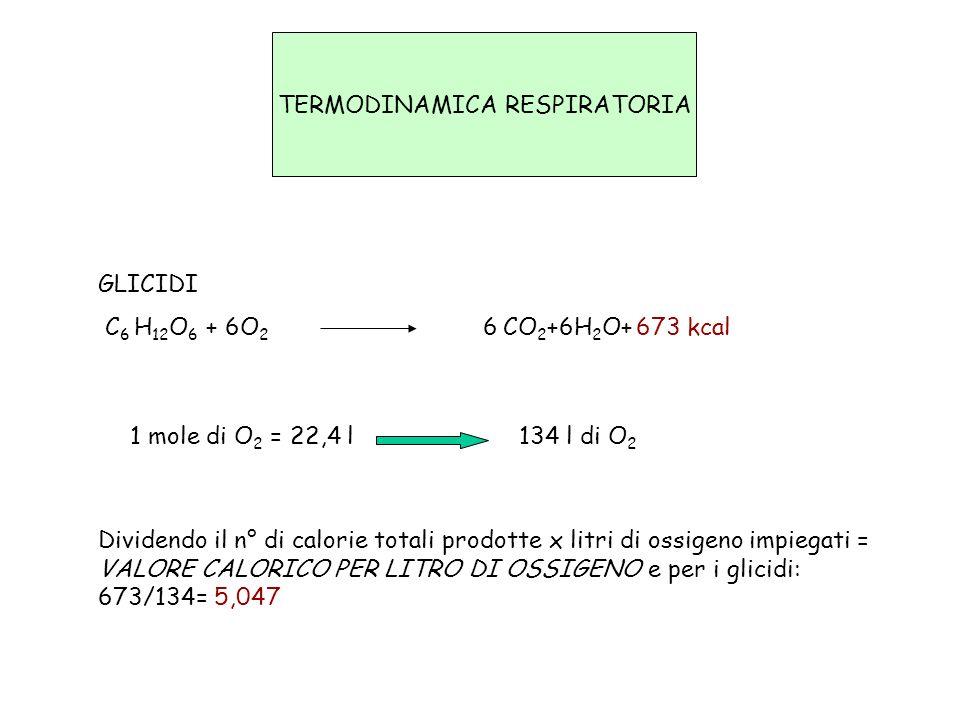 TERMODINAMICA RESPIRATORIA GLICIDI C 6 H 12 O 6 + 6O 2 6 CO 2 +6H 2 O+ 673 kcal 1 mole di O 2 = 22,4 l 134 l di O 2 Dividendo il n° di calorie totali