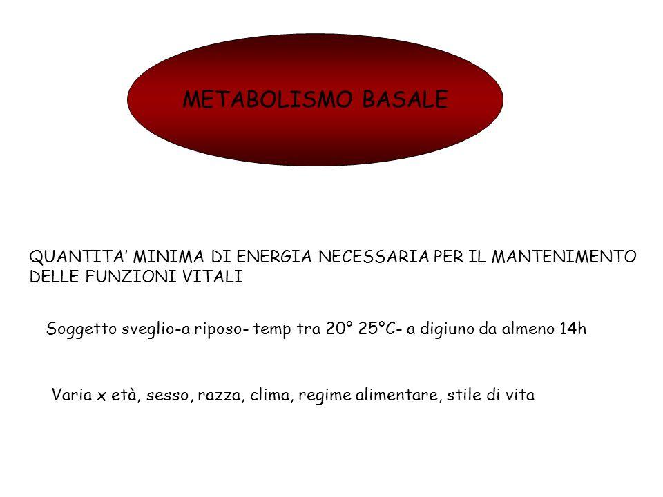 METABOLISMO BASALE QUANTITA MINIMA DI ENERGIA NECESSARIA PER IL MANTENIMENTO DELLE FUNZIONI VITALI Soggetto sveglio-a riposo- temp tra 20° 25°C- a dig