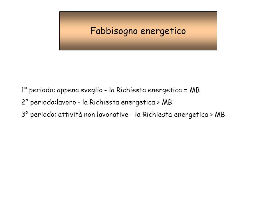 Fabbisogno energetico 1° periodo: appena sveglio - la Richiesta energetica = MB 2° periodo:lavoro - la Richiesta energetica > MB 3° periodo: attività