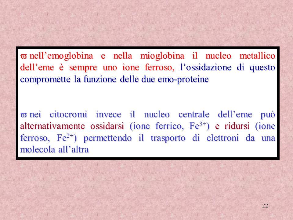 22 nellemoglobina e nella mioglobina il nucleo metallico delleme è sempre uno ione ferroso, lossidazione di questo compromette la funzione delle due e