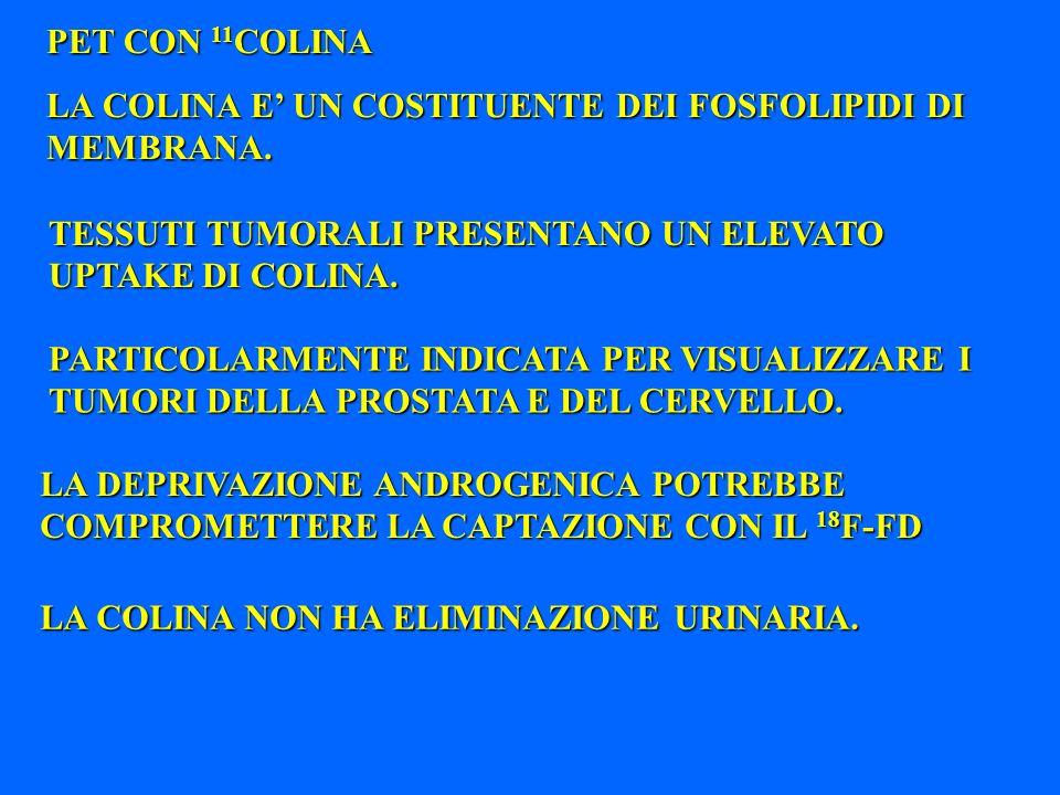 PET CON 11 COLINA LA COLINA E UN COSTITUENTE DEI FOSFOLIPIDI DI MEMBRANA. TESSUTI TUMORALI PRESENTANO UN ELEVATO UPTAKE DI COLINA. PARTICOLARMENTE IND