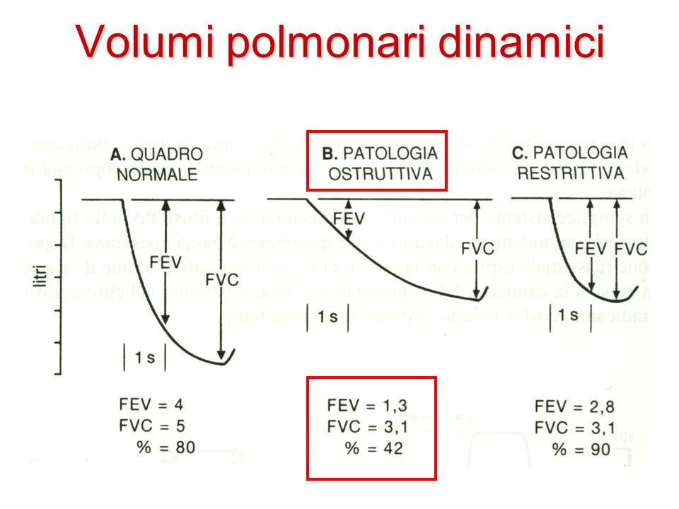 Volumi polmonari dinamici