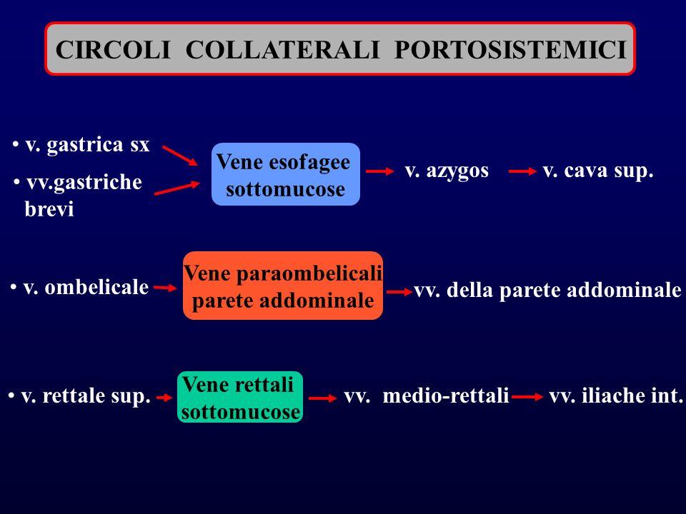 CIRCOLI COLLATERALI PORTOSISTEMICI Vene esofagee sottomucose v.