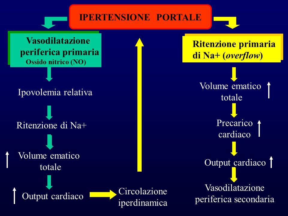 IPERTENSIONE PORTALE Vasodilatazione periferica primaria Ossido nitrico (NO) Vasodilatazione periferica primaria Ossido nitrico (NO) Ipovolemia relativa Ritenzione di Na+ Volume ematico totale Output cardiaco Ritenzione primaria di Na+ (overflow) Ritenzione primaria di Na+ (overflow) Volume ematico totale Output cardiaco Vasodilatazione periferica secondaria Precarico cardiaco Circolazione iperdinamica
