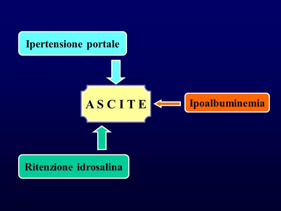 A S C I T E Ipertensione portale Ritenzione idrosalina Ipoalbuminemia