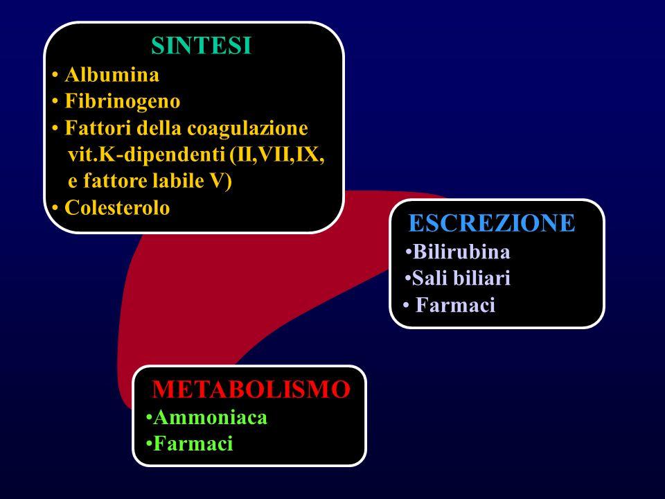 SINTESI Albumina Fibrinogeno Fattori della coagulazione vit.K-dipendenti (II,VII,IX, e fattore labile V) Colesterolo ESCREZIONE Bilirubina Sali biliari Farmaci METABOLISMO Ammoniaca Farmaci