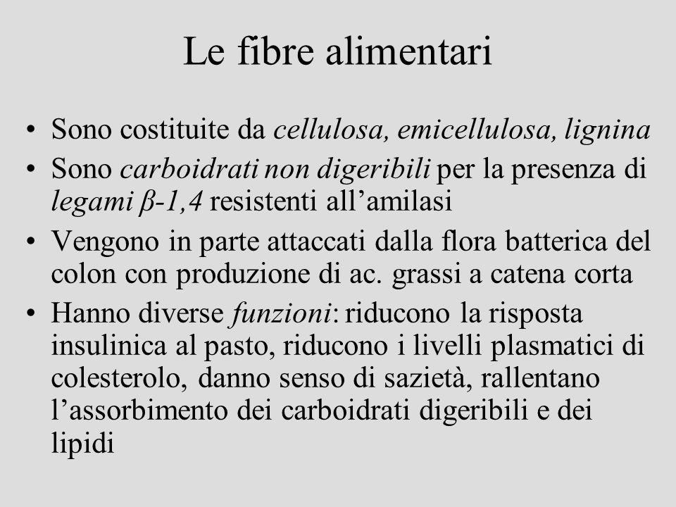 Le fibre alimentari Sono costituite da cellulosa, emicellulosa, lignina Sono carboidrati non digeribili per la presenza di legami β-1,4 resistenti all