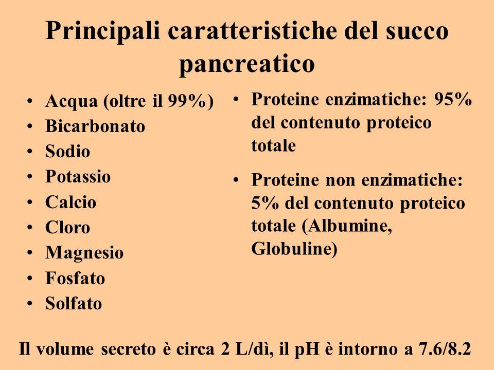 Principali caratteristiche del succo pancreatico Acqua (oltre il 99%) Bicarbonato Sodio Potassio Calcio Cloro Magnesio Fosfato Solfato Il volume secre