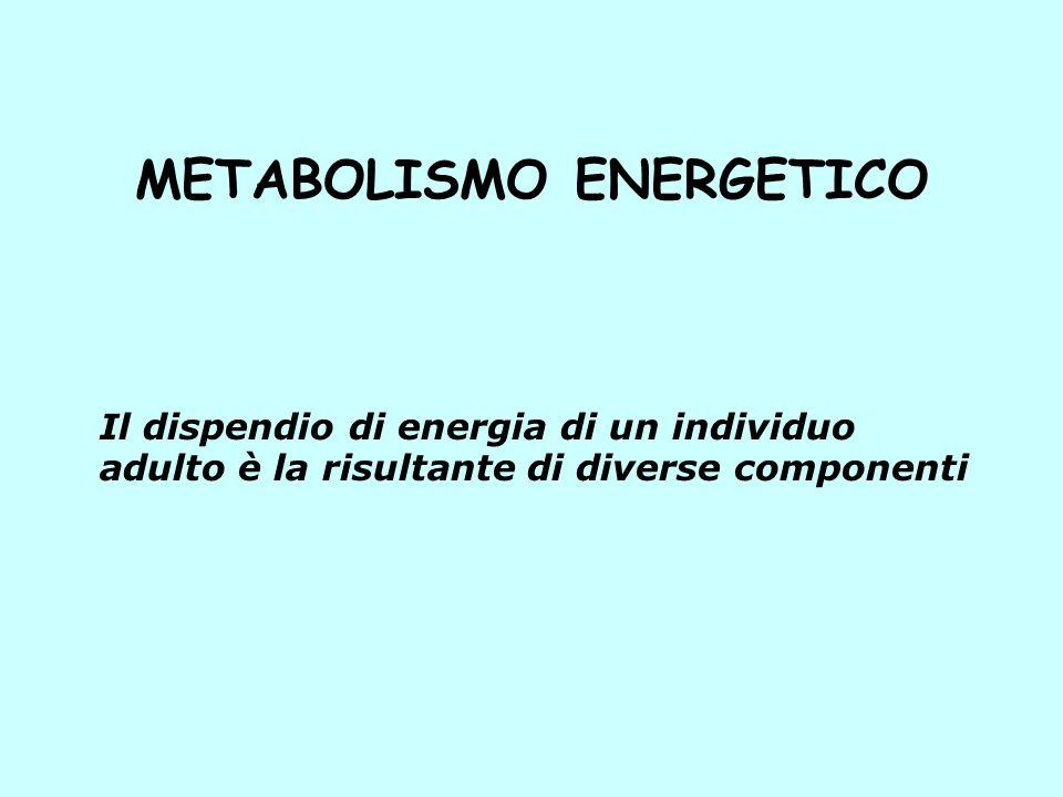 METABOLISMO ENERGETICO Il dispendio di energia di un individuo adulto è la risultante di diverse componenti