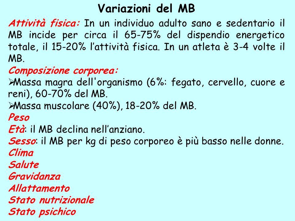 Variazioni del MB Attività fisica: In un individuo adulto sano e sedentario il MB incide per circa il 65-75% del dispendio energetico totale, il 15-20