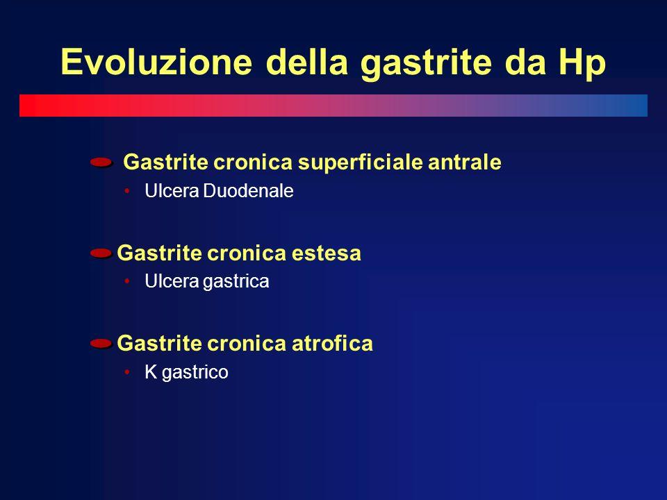 Evoluzione della gastrite da Hp Gastrite cronica superficiale antrale Ulcera Duodenale Gastrite cronica estesa Ulcera gastrica Gastrite cronica atrofi