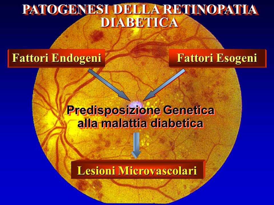 PATOGENESI DELLA RETINOPATIA DIABETICA Predisposizione Genetica alla malattia diabetica Fattori Endogeni Fattori Esogeni Lesioni Microvascolari